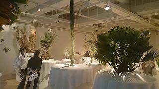 2015.7.29ウルトラ植物博覧会